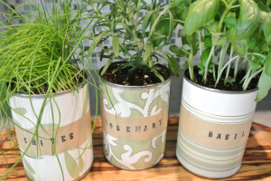 5 DIY Indoor Garden Ideas for Your Home